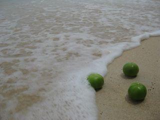 Barbados 060