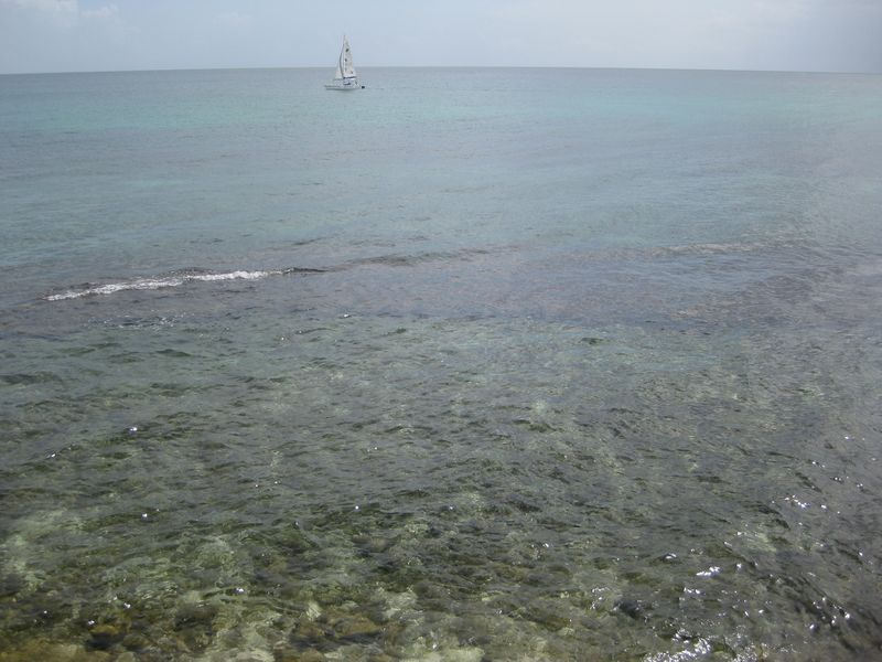 Barbados 398