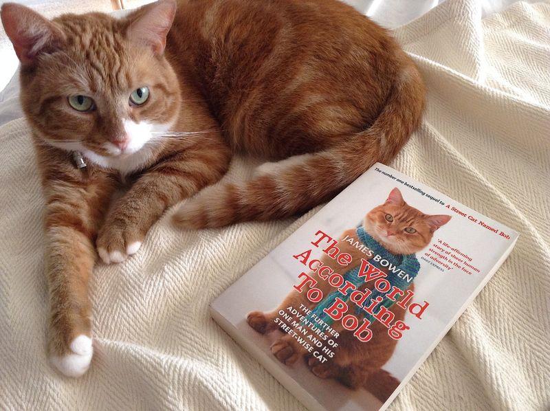 Beau met boek