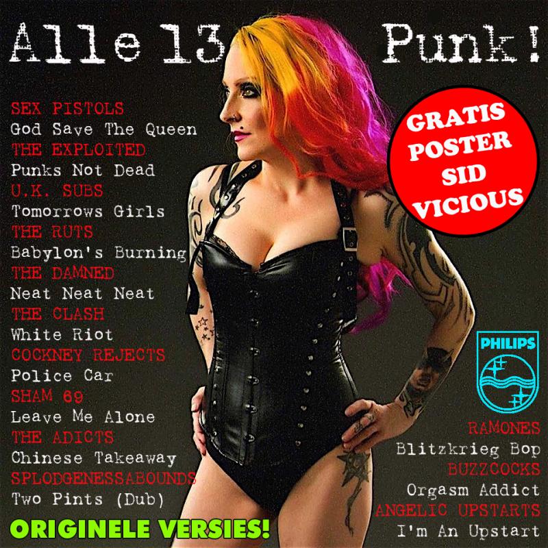 Alle 13 punk2