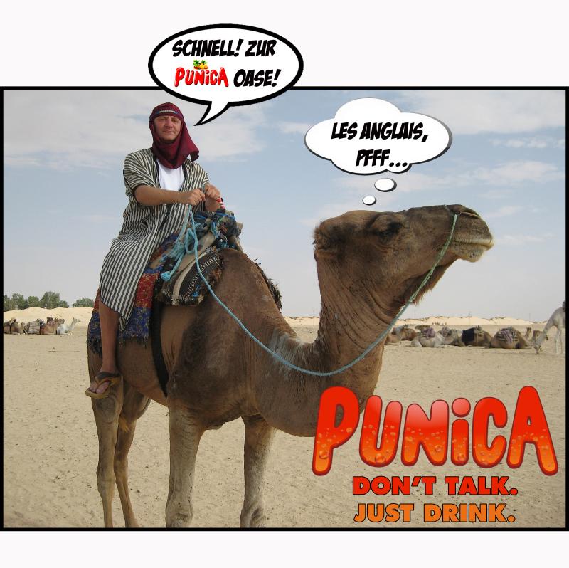 PUNICA AD4
