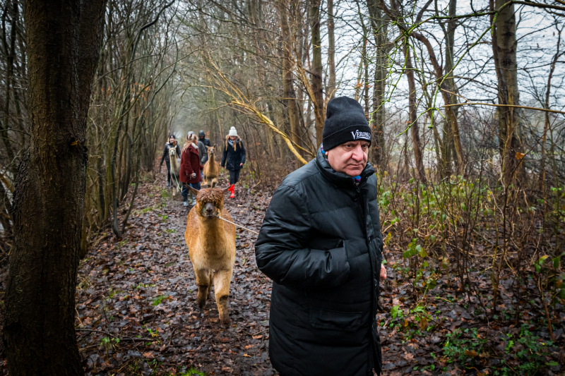 Alpaca wandeling 03-01-2020 (16)